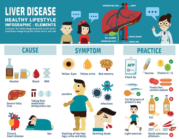 Liver infographic vector illustration