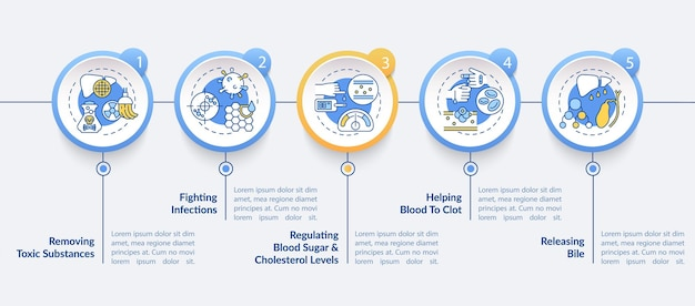 Liver roles infographic template. toxic substances removal presentation design elements.