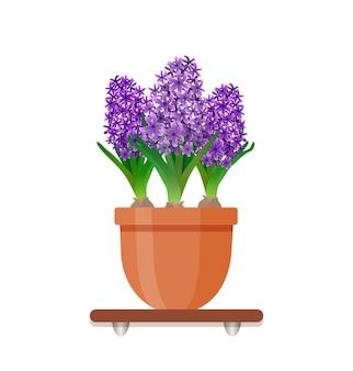 Элемент украшения дизайна гостиной. комнатное растение с цветами в горшке в плоском стиле.