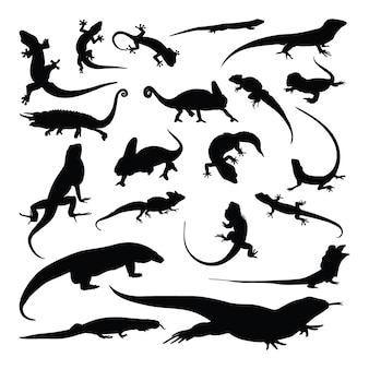 도마뱀 카멜레온 도마뱀 실루엣 세트