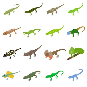 Lizard icons set