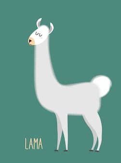 Лама альпака. животное лама на зеленом фоне.
