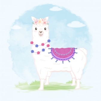 Llama hand drawn cartoon illustration