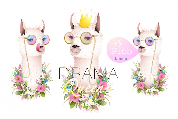 Tシャツ、グリーティングカード、その他のプロジェクト向けのラマのドラマデザイナーコレクション。