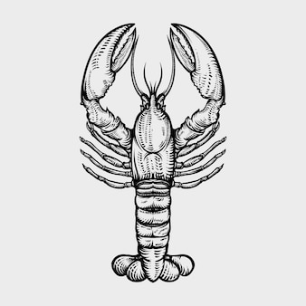 Lobster hand drawn engraving style illustrations Premium Vector