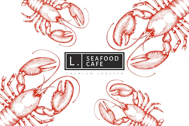 Lobster  template. hand drawn  seafood illustration. engraved style. vintage sea animal background