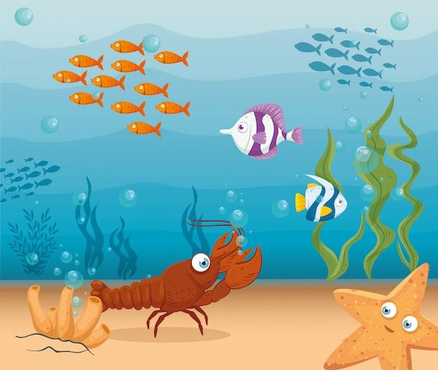 바다, 바다 세계 거주자, 귀여운 수중 생물, 서식지 해양 개념의 물고기와 야생 해양 동물 가재