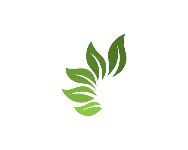 Logos of green tree leaf ecology