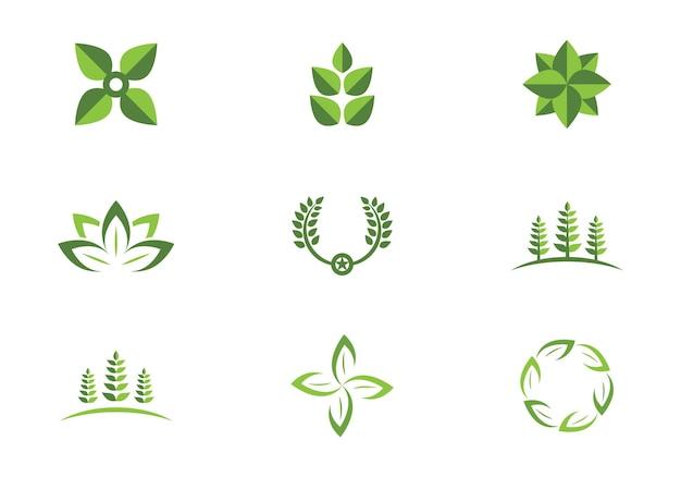 緑の葉の生態自然要素ベクトルアイコンのロゴ