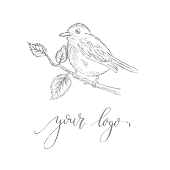 Logotype template with a bird on a branch
