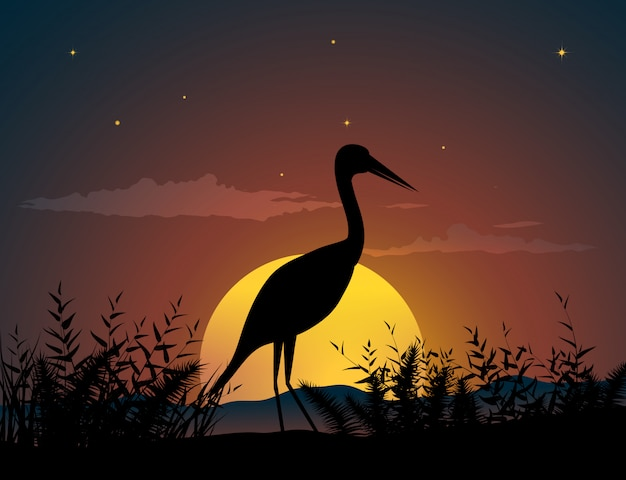 Lonely bird in sunset