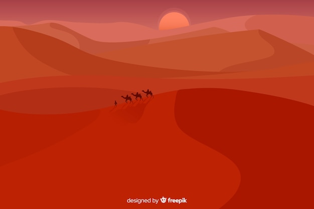 Long shot of camels in dunes
