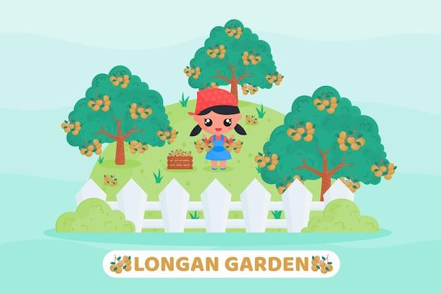 リュウガンを収穫するかわいい女の子とリュウガンの庭