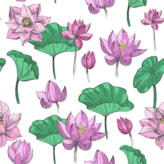 Lotus flower. seamless pattern