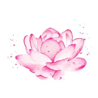 연꽃 수채화