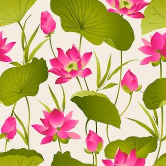 Lotus flowers and leaves