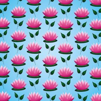 Lotus flowers leaves