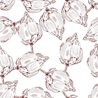 Lotus hand drawn sketch floral vintage pattern background