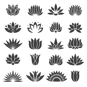 ロータスアイコン。ビューティーサロン熱帯植物の定型化されたセットの植物のロゴ。