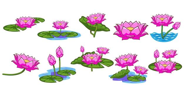 Lotus vector set clipart design