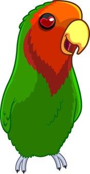 Lovebird cartoon character. illustration isolated on white background
