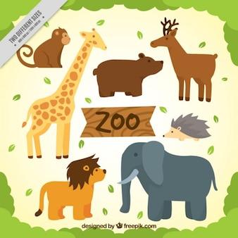 Animali belli profili confezione