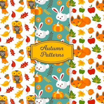 Lovely autumn pattern collection with flat design