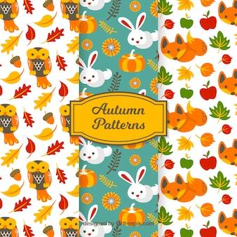 フラットデザインの素敵な秋のパターンコレクション