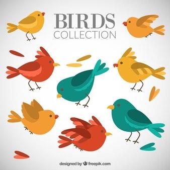 Lovely birds pack
