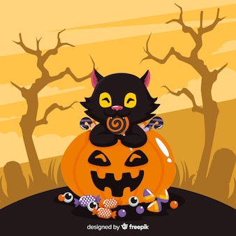Lovely black cat on a pumpkin eating a lollipop