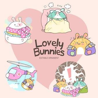 사랑스러운 토끼 안나