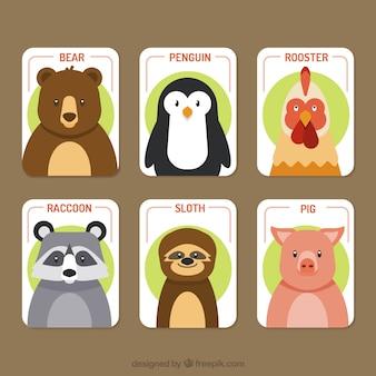 動物の素敵なカードコレクション