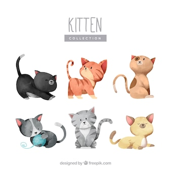 Lovely collection of watercolor kittens Premium Vector