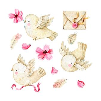花、封筒、羽のある素敵な鳩のコレクション。