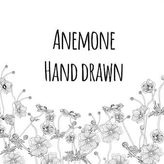 Lovely flower anemone hand drawn background