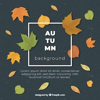 素敵な手を描いた秋の要素と葉の背景
