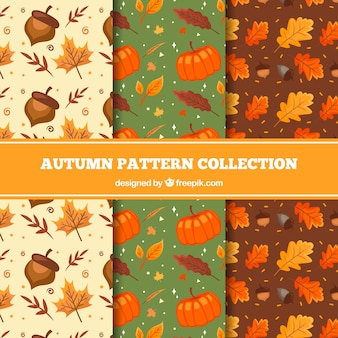 Lovely hand drawn autumn pattern collection