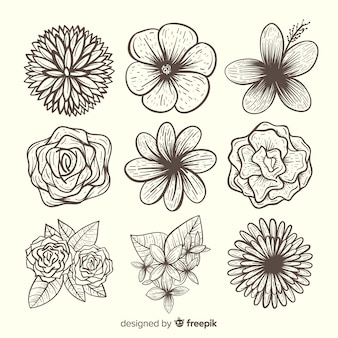 Lovely hand drawn flower collection