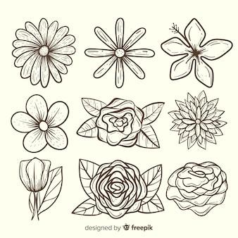 사랑스러운 손으로 그린 꽃 모음