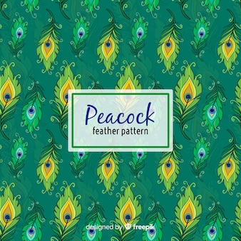 Lovely hand drawn peacock feather pattern