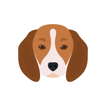 Lovely head bearded dog beagle