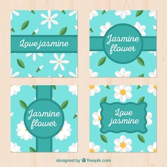 사랑스러운 자스민 카드 컬렉션