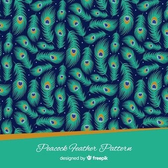 Lovely peacock feather pattern with flat design