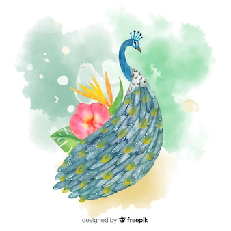 Lovely peacock in watercolor style