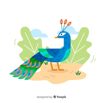 Lovely peacock with flat design