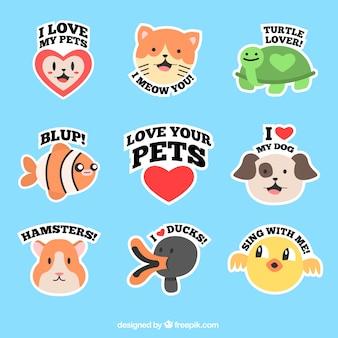 Animali da compagnia bella etichette