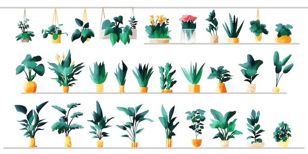 Милые растения