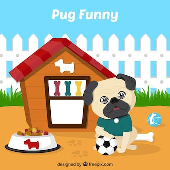 Lovely pug with its house