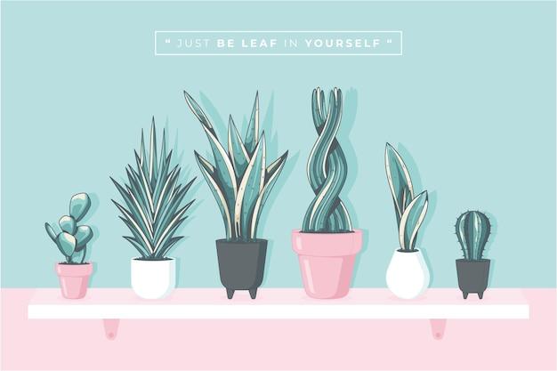 Lovely sansevieria plant illustration background