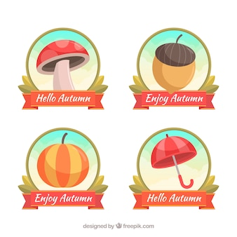 Lovely set of autumn labels with flat design